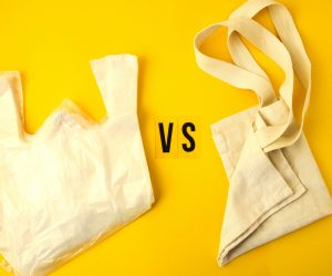 Clear Disposable Plastic Bag On Yellow Background Vs Eco Tote Bags