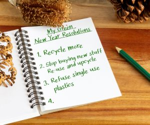 My Green New Years Resolutions Heading With Environmentally Friendly Resolutions Written In Journal. New Year Environmental Aspirations Concept.